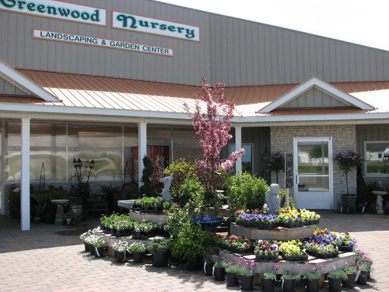 Greenwood Nursery Shopping in Marshall, MN